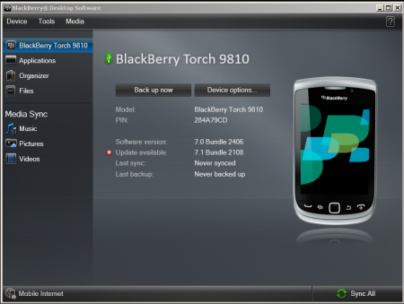 BlackBerry Torch 9810 update